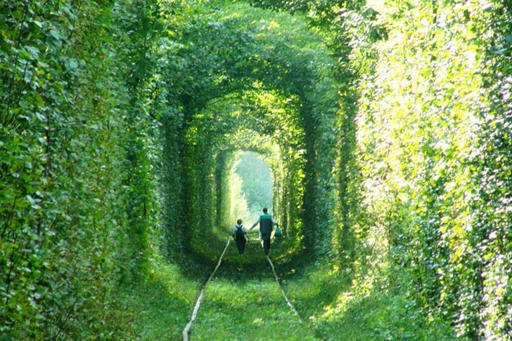 tunel green